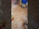 Ребенок устроил потоп в квартире. Бассейн в доме своими руками. Малыш открыл батарею. 5 минут тишины