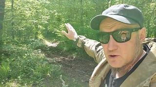 Хватит крышевать мародерство в лесах Апшеронского района!