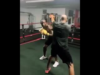 Белл боксирует и скачет