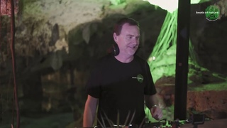 Reforesting with: NICK WARREN | Beats of Nature | Cenote Aktun Chen, Tulum, Mexico