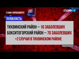 Коронавирус: информация по Бокситогорскому району на 13 мая