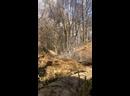 Видео от Анастасии Нифонтовой
