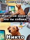 Фотоальбом Павла Абрамова