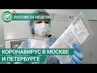 Коронавирус выявлен в Москве и Петербурге. Россия за неделю. ФАН-ТВ