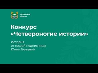 Видео от Юлии Гузеевой