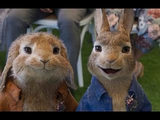 Трейлер «Кролик Питер 2» (2021) HD