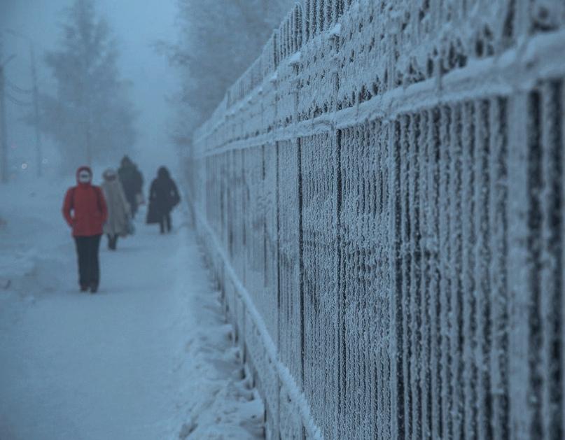 Вильфанд предупредил об аномальных холодах по всей России