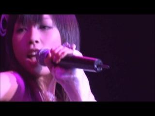 11. Kinjirareta Futari [AKB48 1st Concert Aitakatta Shuffle Version]