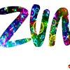 Zumba® Fitness с Екатериной Гуменниковой ZIN