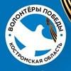 Волонтёры Победы. Костромская область