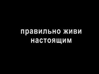 """Александр Дедуренко """"Вот какую рекламу нужно показывать по ТВ, а не тупые телешоу"""""""