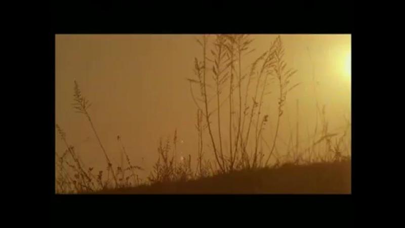 Prem Jaal Main Dance Song Jis Desh Mein Ganga Rehta Hain Govinda Sonali B