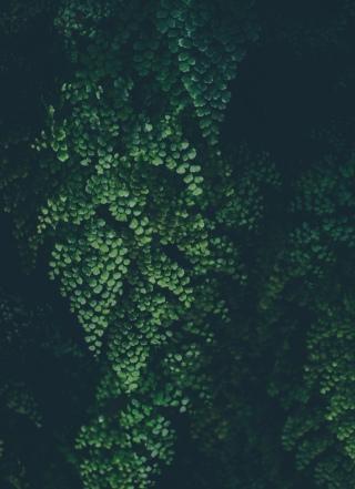 Артур Корпаков фотография #38