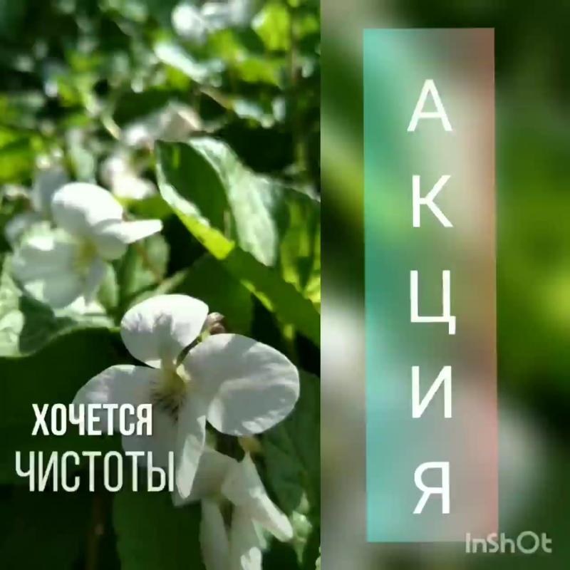 InShot_20190510_081130454.mp4