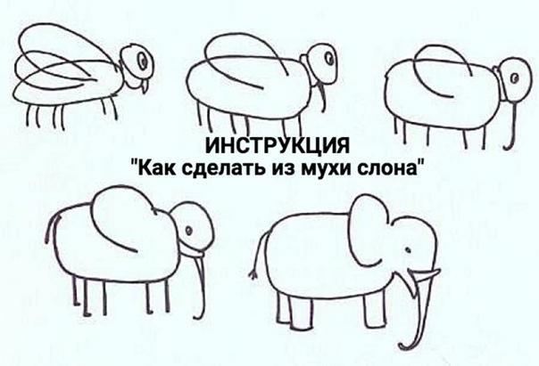 Как из мухи сделать слона