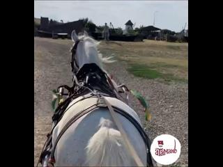 Video by Выставочный комплекс Атамань
