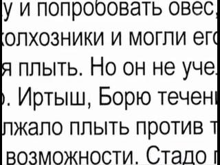 Про незавидную судьбу поросёнка Борьки.mp4