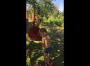 Видео от Натальи Сотник