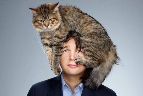 Муж сказал: «Никаких котов в доме!». Что было дальше Мой друг Гарик котов терпеть не может. Всегда ненавидел. Никакой аллергии, просто неприязнь. Его бесила шерсть, их мяуканье, их вечное