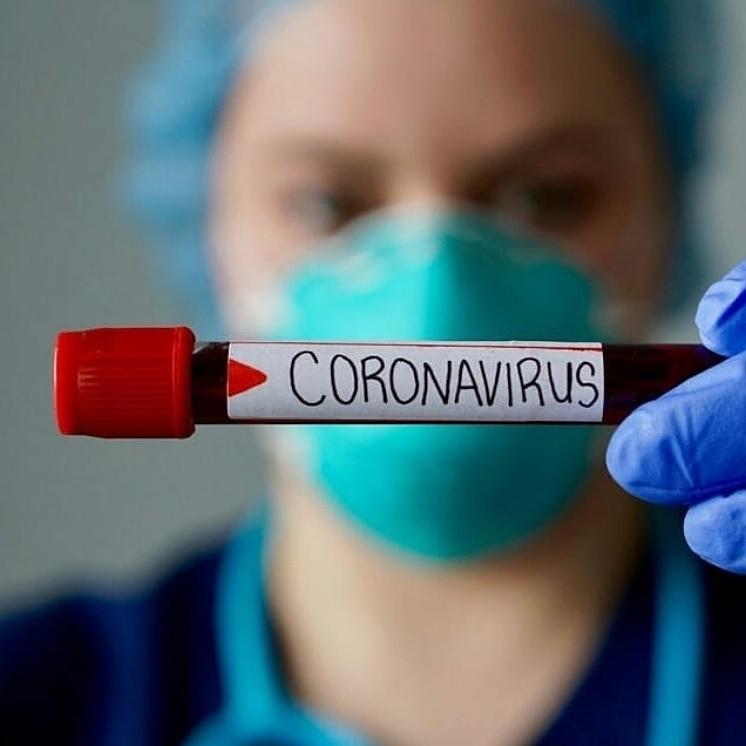 Два новых случая заболевания жителей коронавирусной инфекцией официально подтверждены в Петровском районе за минувшие сутки
