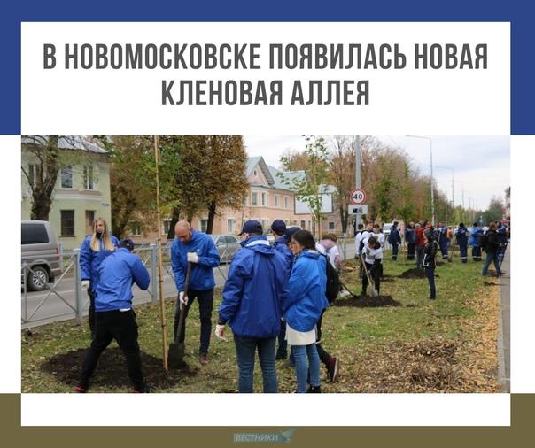 В Новомосковске появилась новая кленовая аллея ????  На улице Шахтеров от музыкального колледжа до отделения Сбербанка... Тула