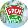 Моладзь Барысаўшчыны|БРСМ