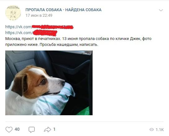 Максим Кац — зоофил?, изображение №3