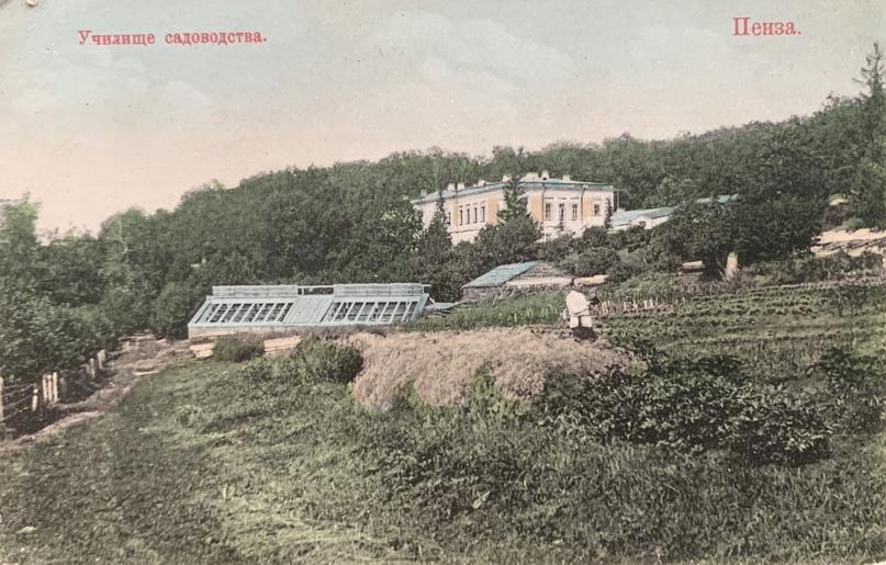 Пензенское училище садоводства.