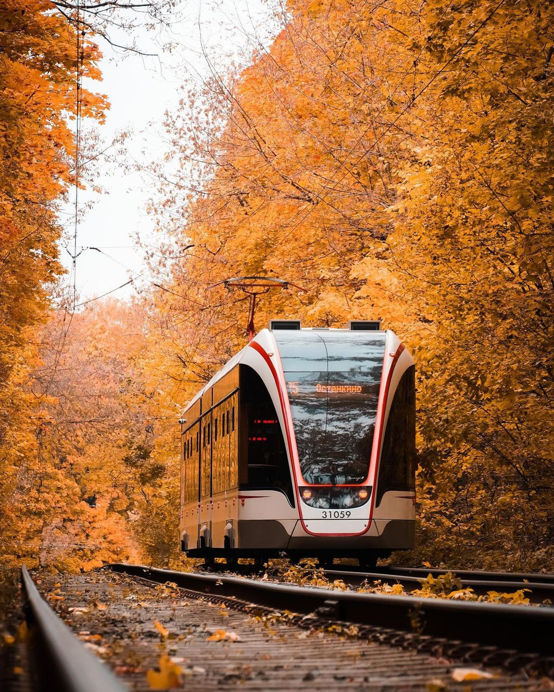 С наступлением осени нас всё чаще отмечают на романтических кадрах с участием единственного главного героя - трамвая, который гордо каждый день исполняет свою работу и доставляет людей в нужные им точки