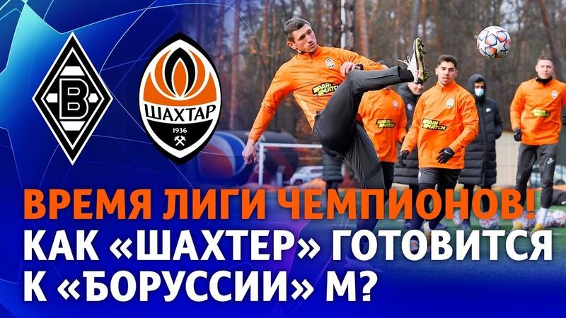 Время для Лиги чемпионов Тренировка Шахтера накануне встречи с Боруссией М