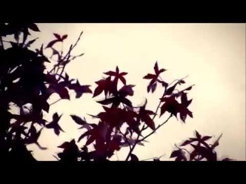 Delibes Lakmé Flower Duet instrumental