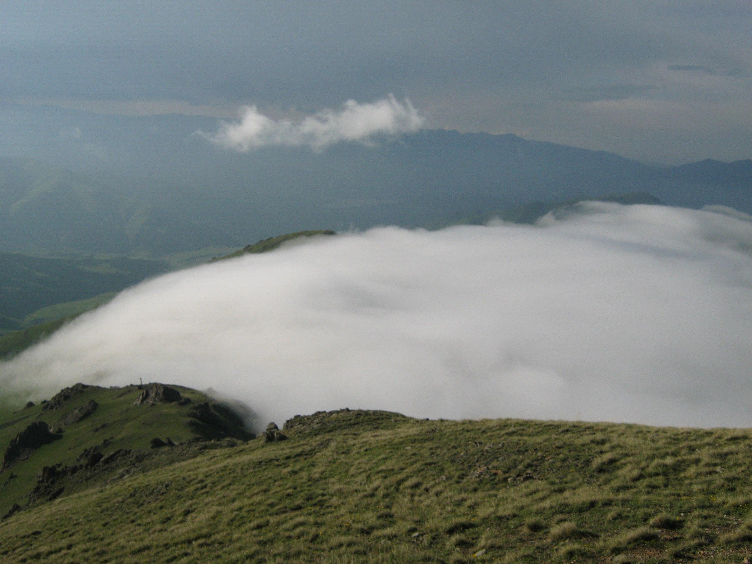 вскоре после выпадения дождя поднимается густой туман
