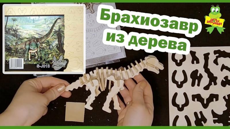 Сборная деревянная модель Wooden Toys Брахиозавр Скелет динозавра из дерева от ИП Чернусь
