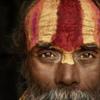 Zen sense / Сознание Дзэн
