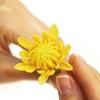 Керамическая флористика. Цветы из глины FLEUR