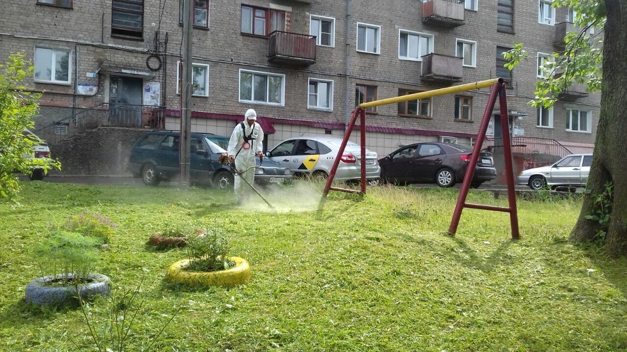Ул. Большева 15, 17. Кошение газонов.