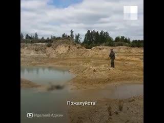Фермер застрелил хаски на карьере под Челябинском