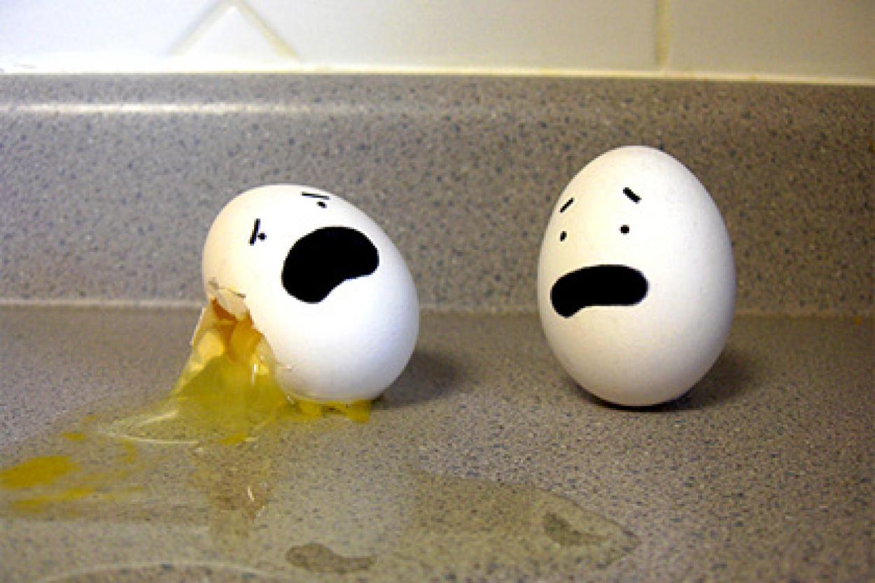 На Ставрополье обнаружили более 7 тысяч зараженных яиц